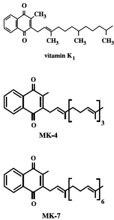 vzorec vitamínů k2, rozdíly mezi MK-4 a MK7