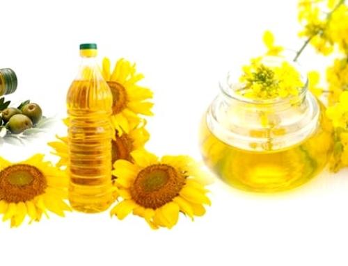 Nejmasovější jed vdějinách – řepkový olej zkracuje nám život o10 let